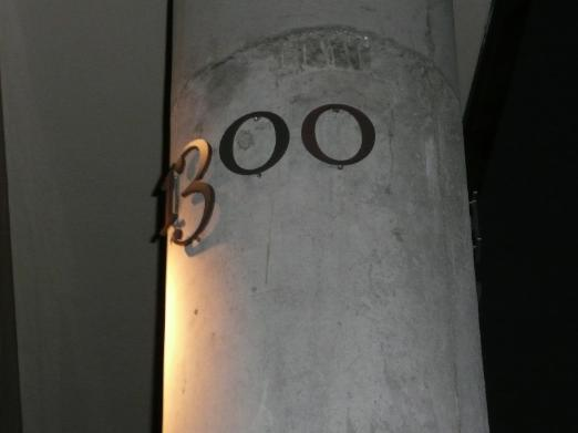 2007_11_1300.jpg
