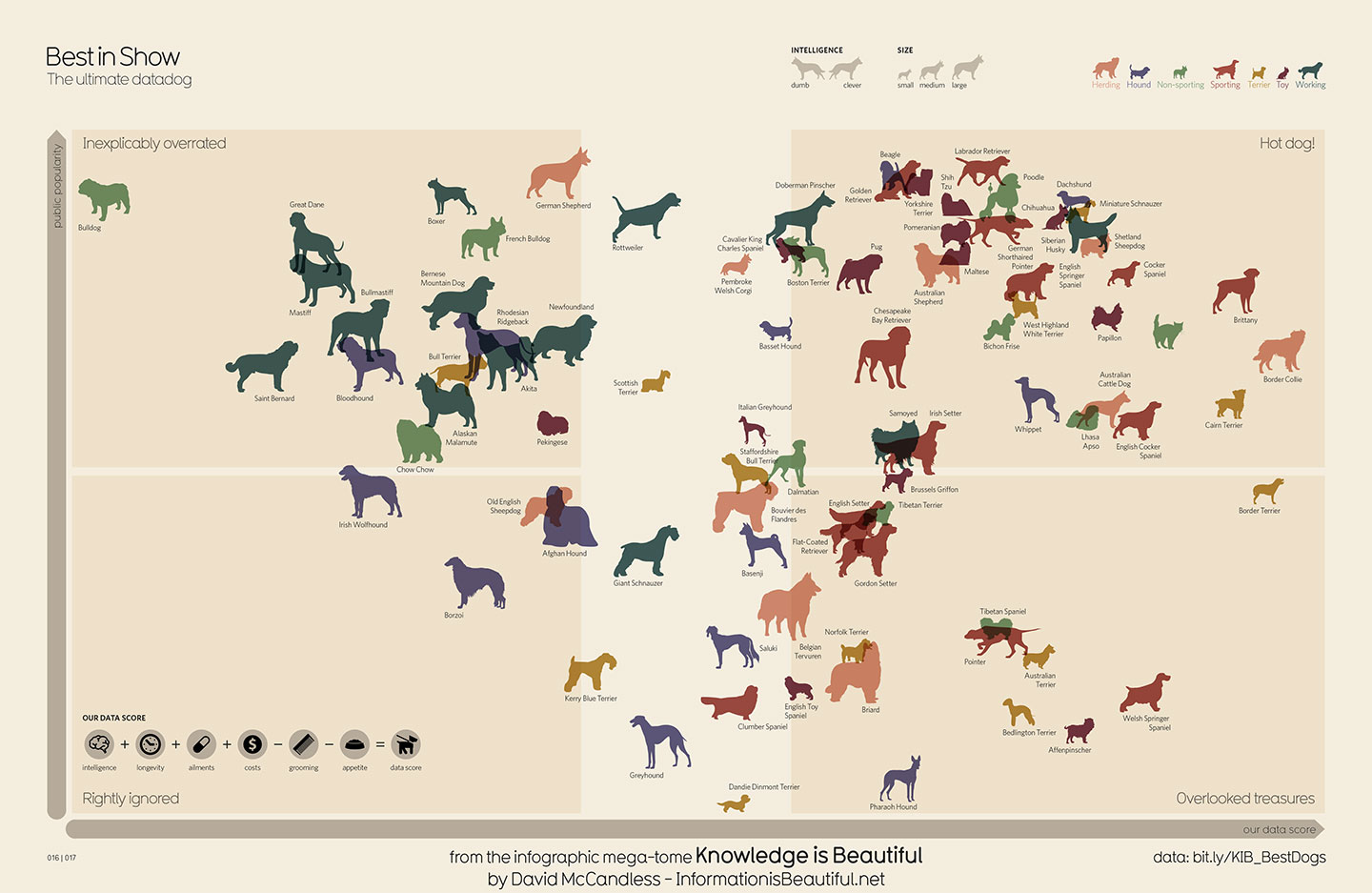 Australia Map Looks Like A Dog.A Definitive Ranking Of The Most Overrated And Underrated Dog Breeds