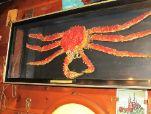 crabDL150auc.jpg