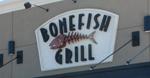 bonefish1502.jpg