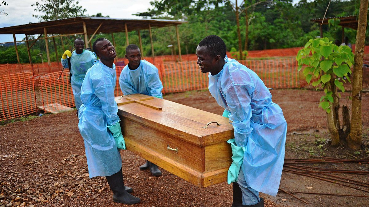 Scientists found the origins of the Ebola outbreak — by tracking its mutations