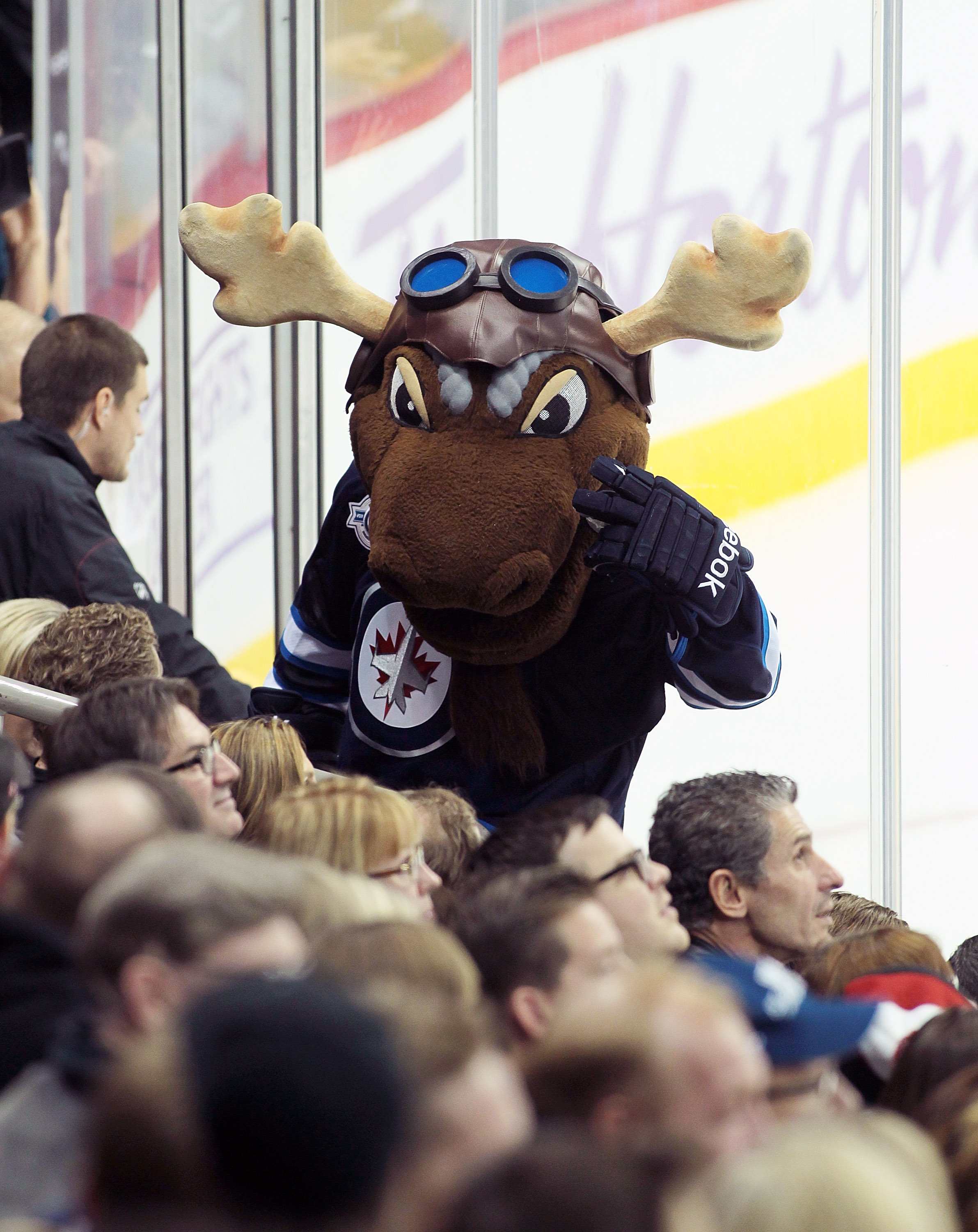 AHL: The Manitoba Moose Are A Mess