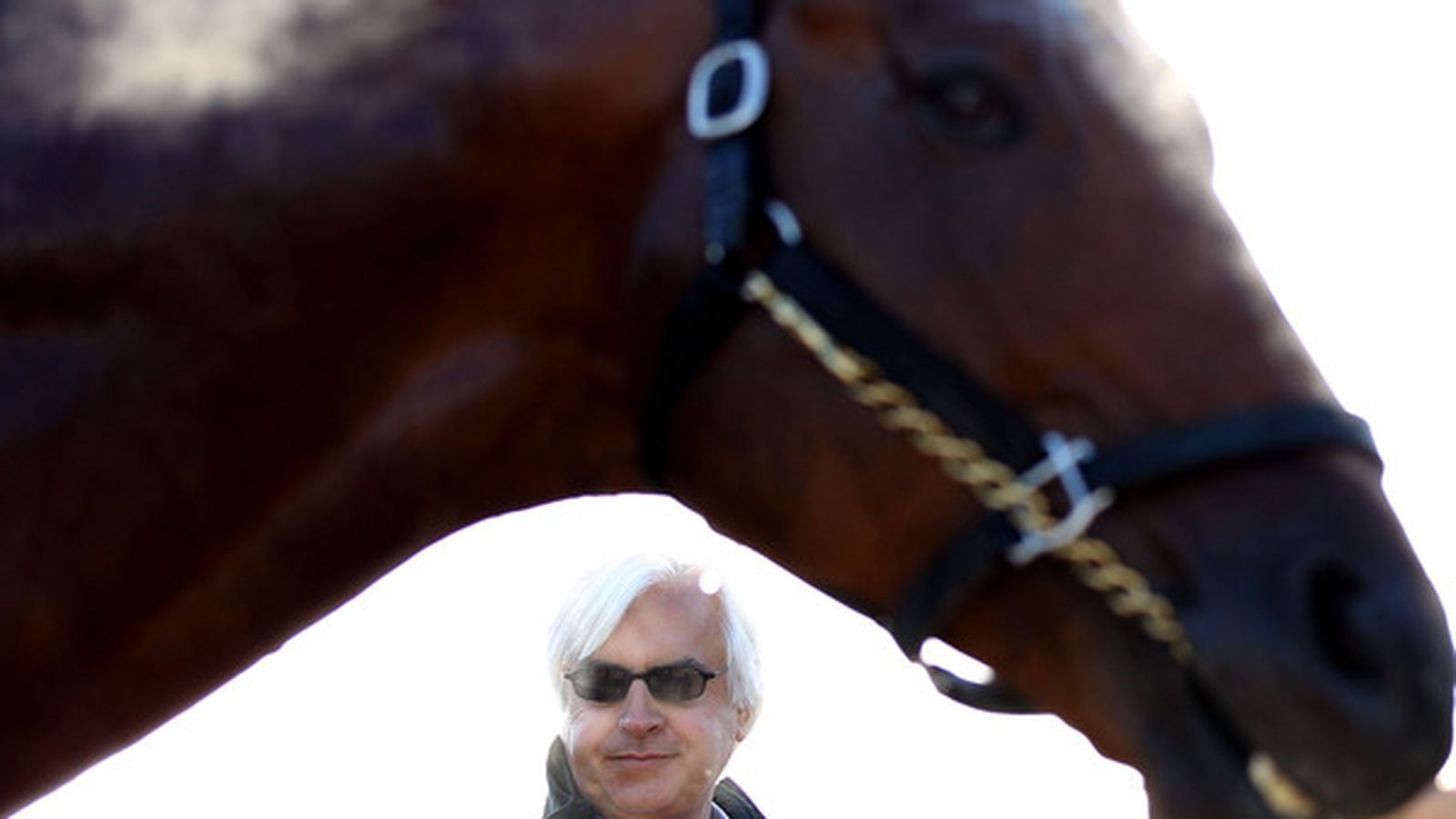 Sunland Park Derby 2013: Entries, Post Positions & Odds ...