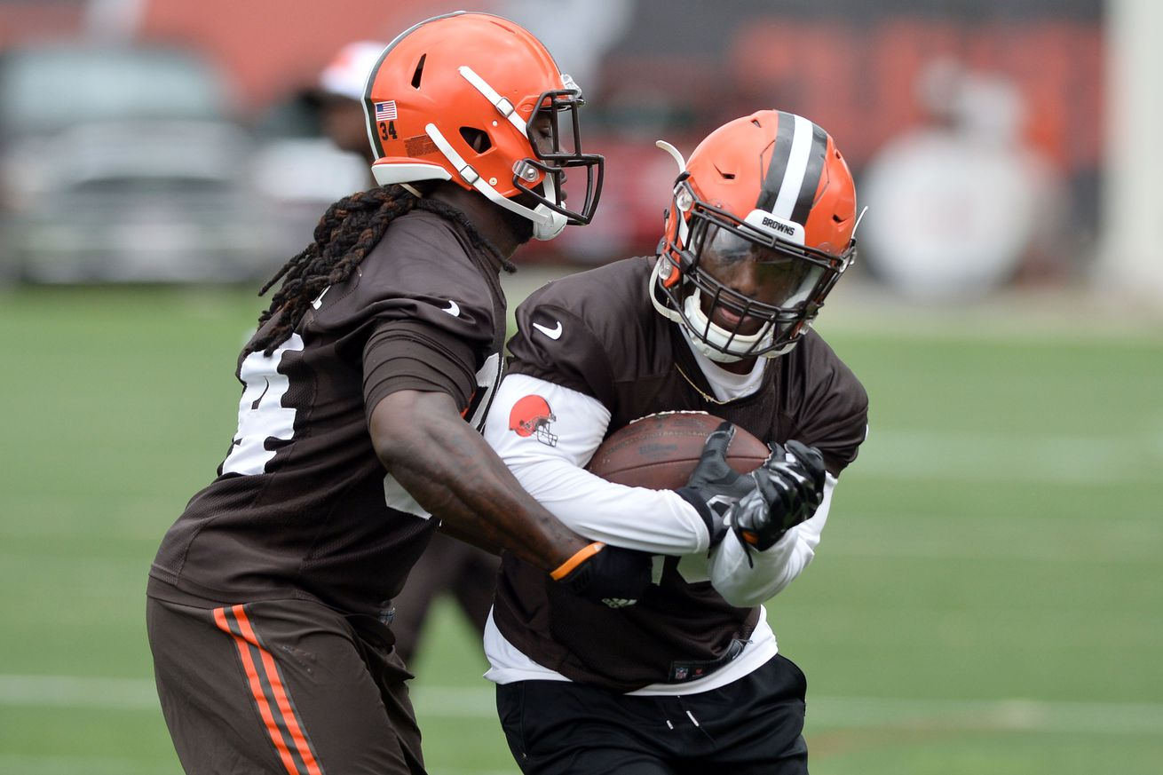 Cleveland Browns Training Camp 2016: RB Preview, Part 1 - Dawgs By ...