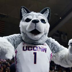 UConn Huskies mascot Jonathan