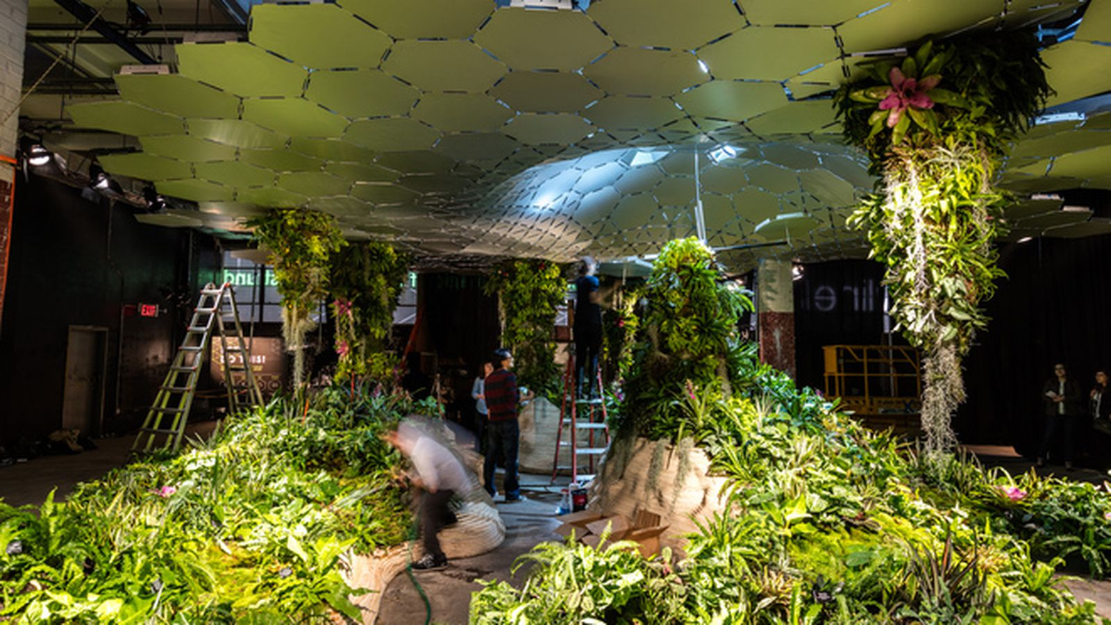 City seeks creative responses for proposed lowline space curbed ny