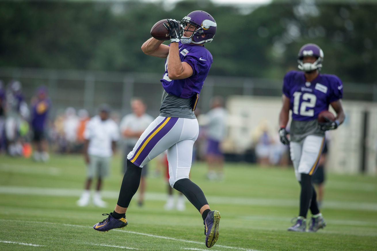 Cheap NFL Jerseys Wholesale - Minnesota Vikings Release WR Isaac Fruechte - Daily Norseman