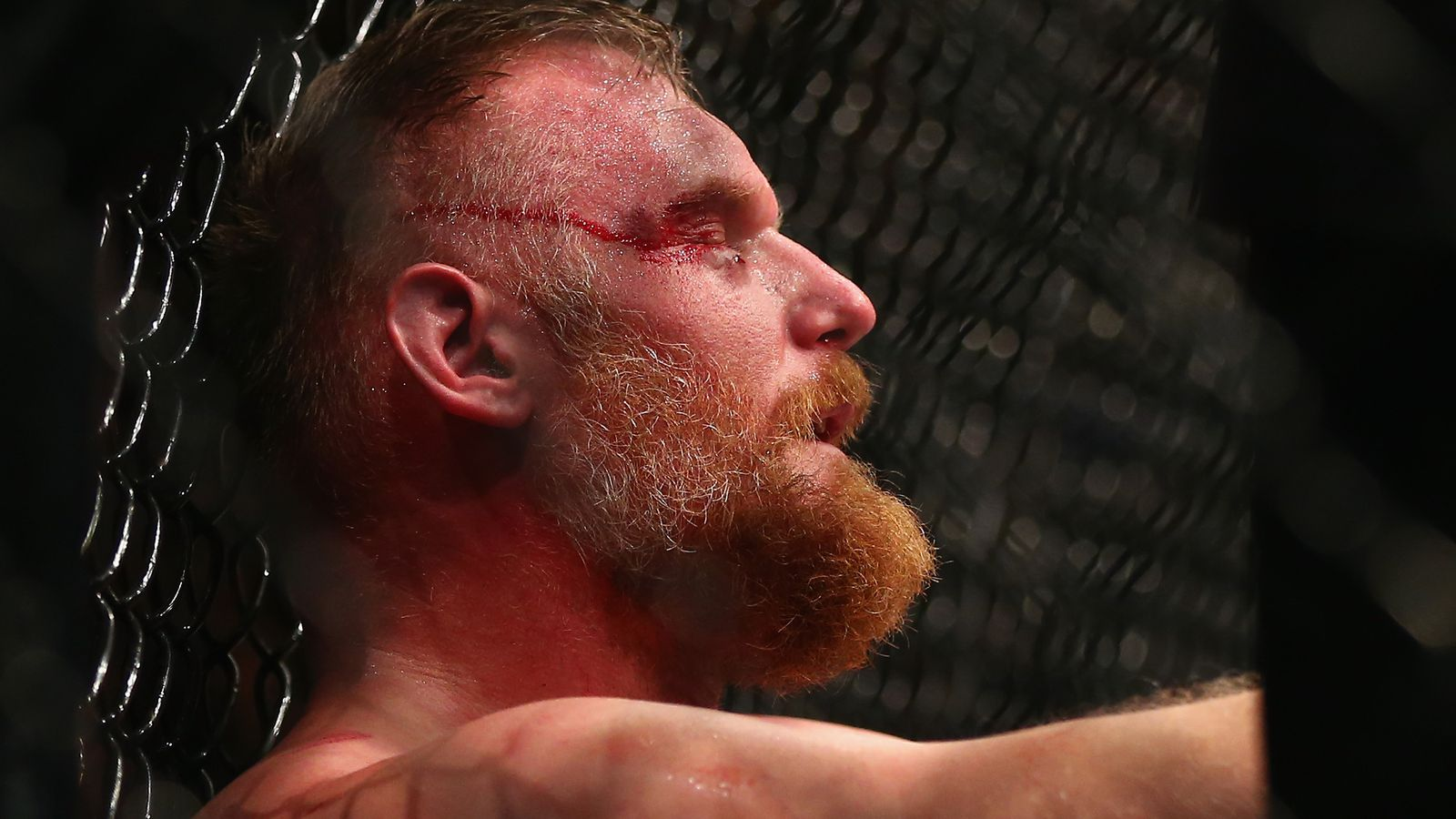 ... Night 93 video recap: Barnett batters, submits Arlovski - Bloody Elbow