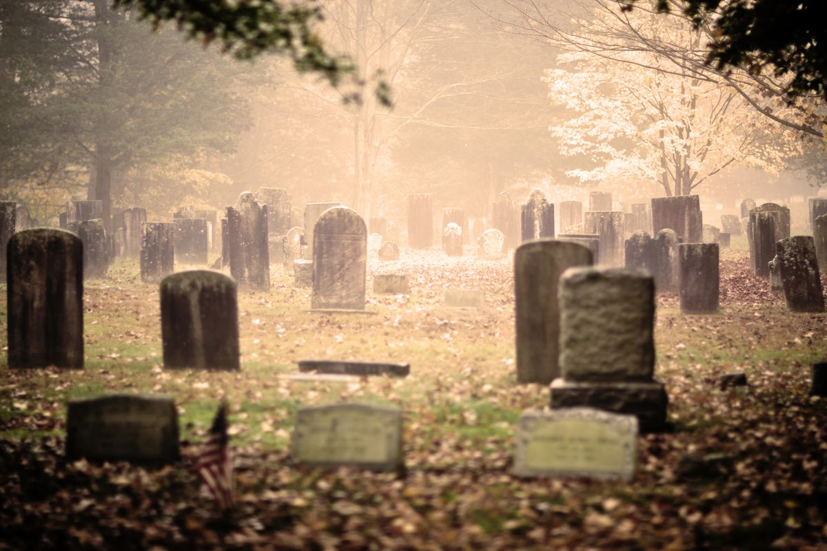 5 moving beautiful essays about death and dying vox it