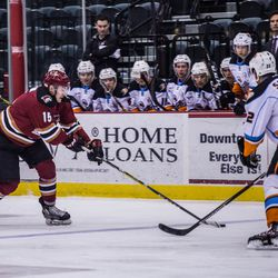 <strong>Laurent Dauphin </strong>tries to get possession of the puck as he heads into the Gulls' end of the ice