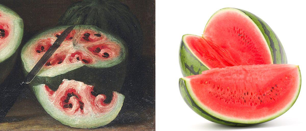 Still life watermelon with white swirls vs photograph of modern red watermellon.