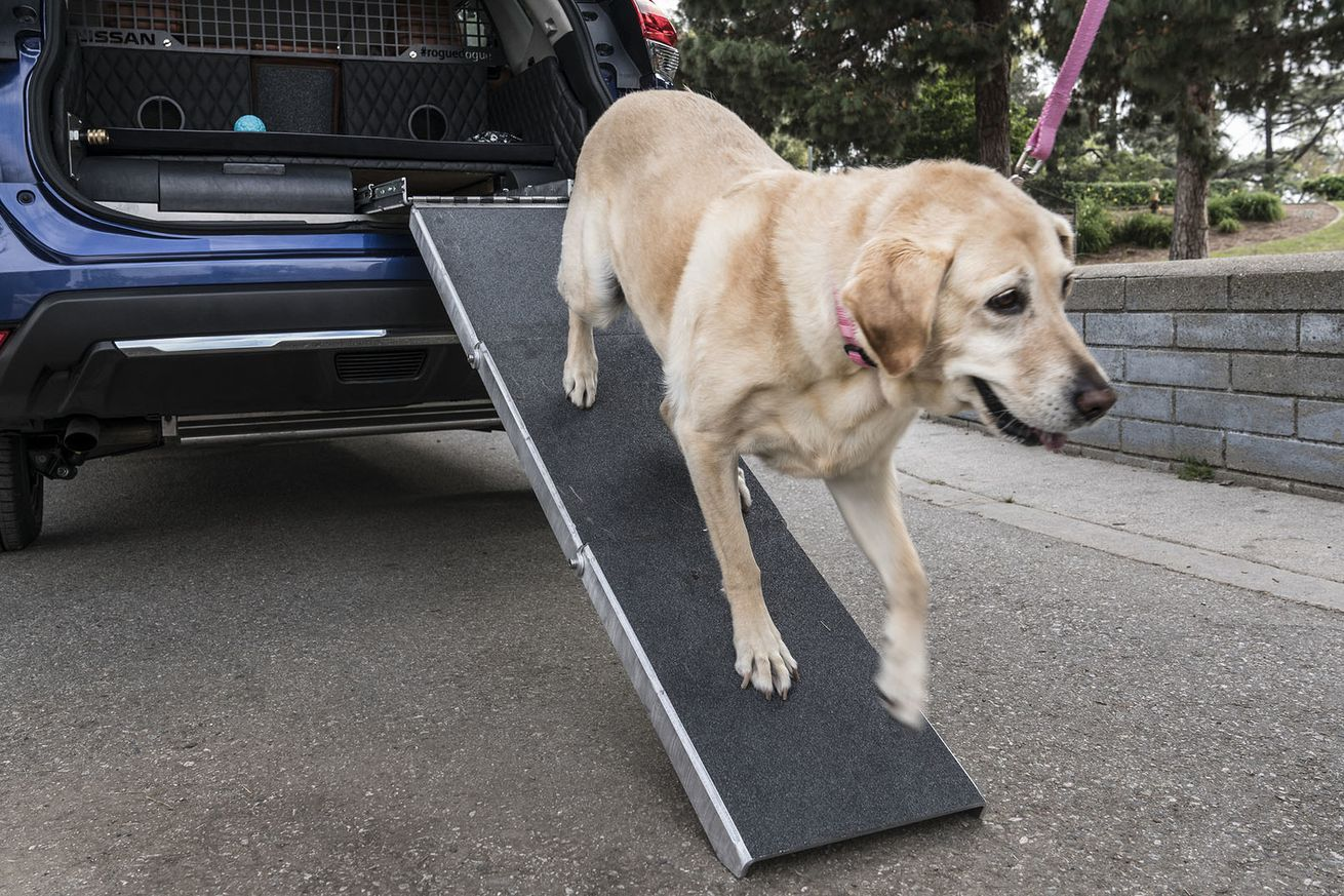 Is Nissan's Rogue Dogue a good place to put dogs or a dog prison on wheels?
