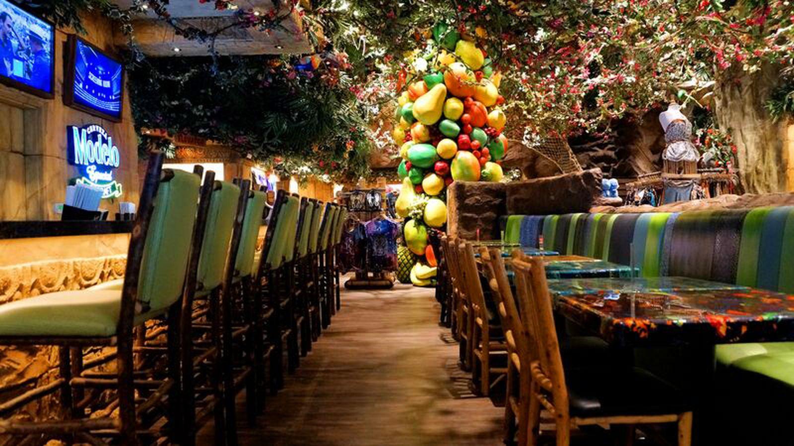 Rainforest Cafe San Diego Zoo