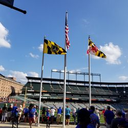 Another view of flags