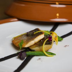 Pan roasted arctic char, squid ink white navy bean hummus, confit Meyer lemons, sugar snap peas finished with argan oil and fleur de sel from Oualidia