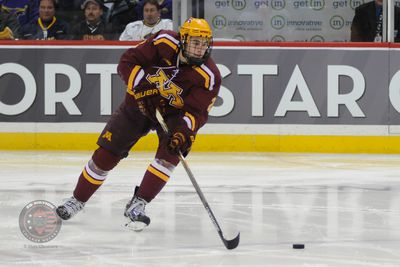 BIG10: Gophers Brady Skjei's Role Growing