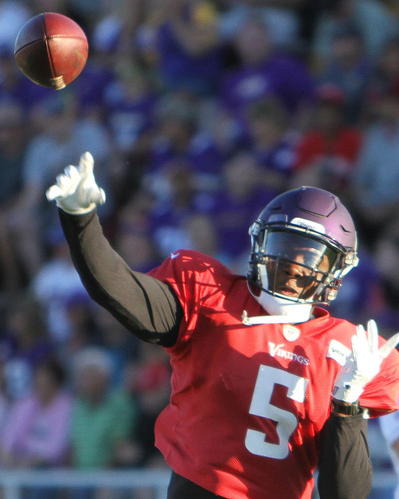 Minnesota Vikings Training Camp evaluations: offense and special ...