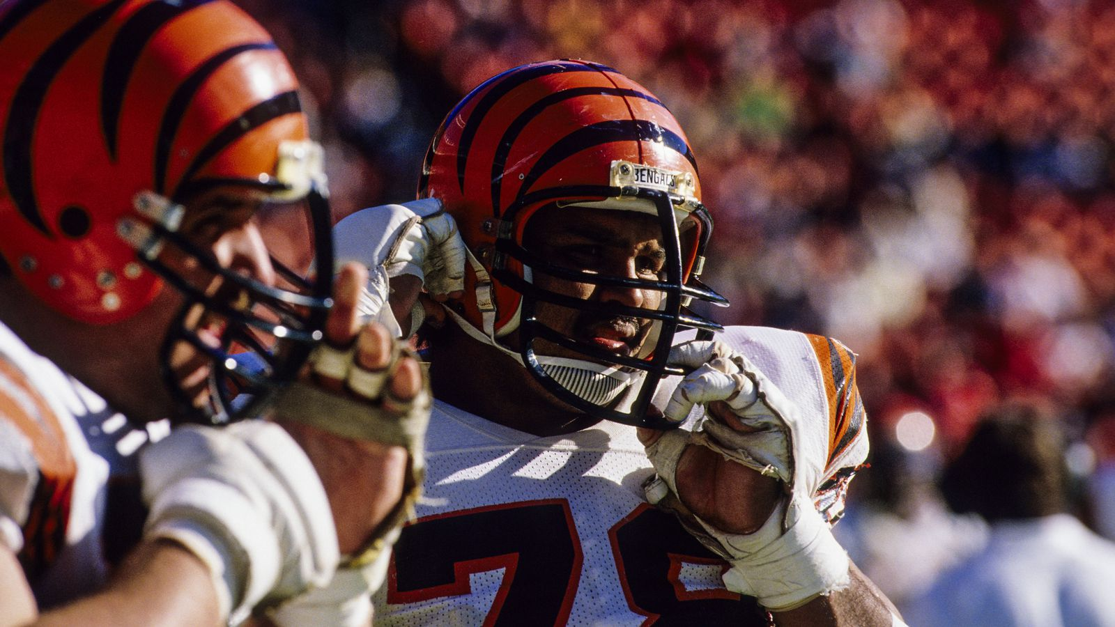 Bengals should retire four jerseys - Cincy Jungle
