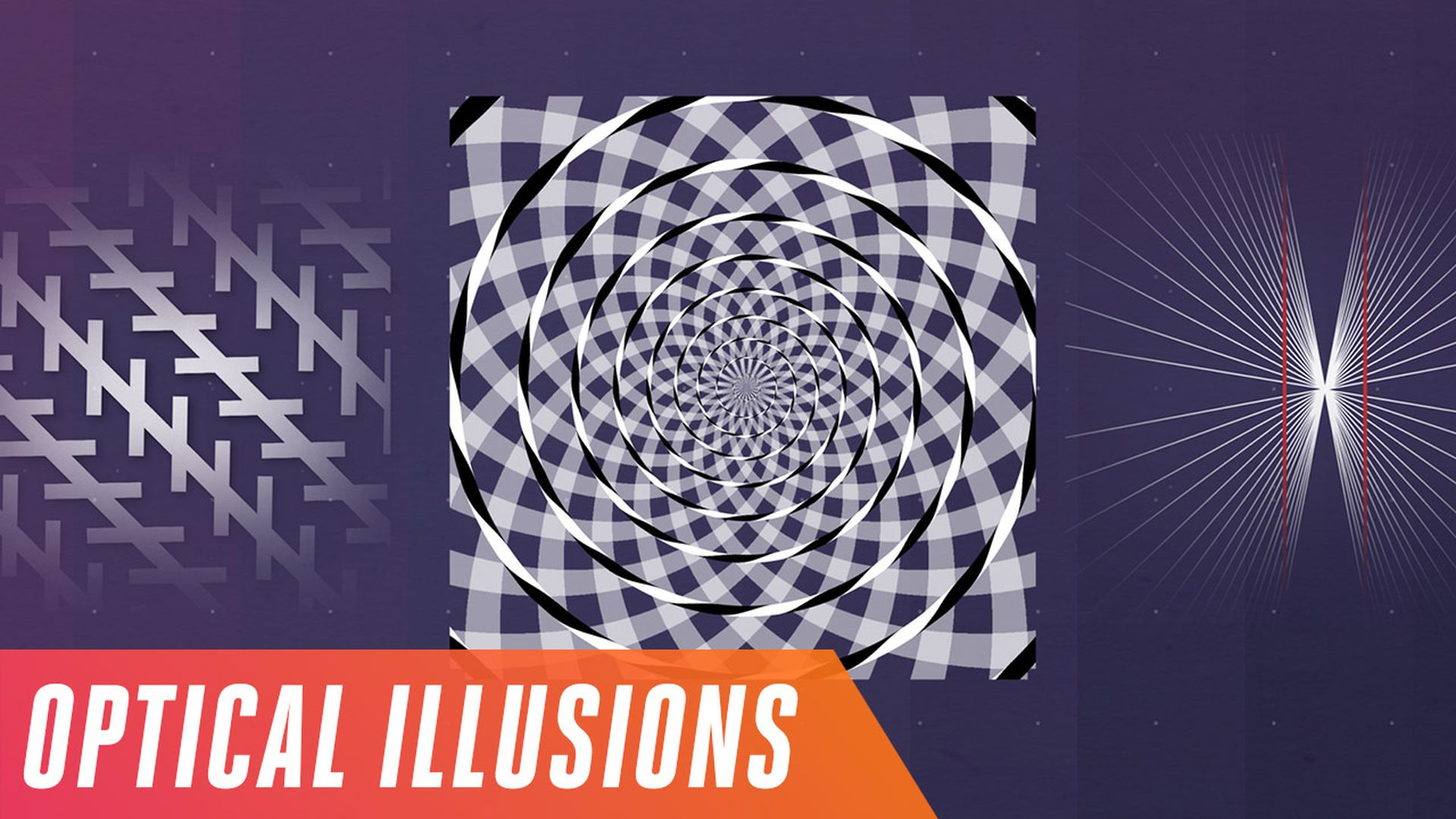 Line Optical Questions : The brain bending science behind optical illusions verge