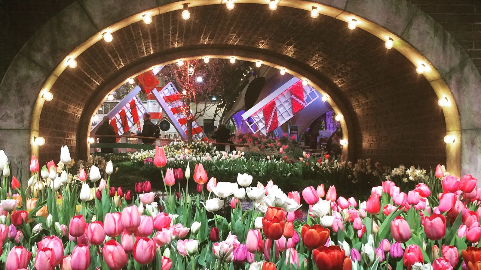 Philadelphia flower show what happens to the flowers - Chicago flower and garden show 2017 ...