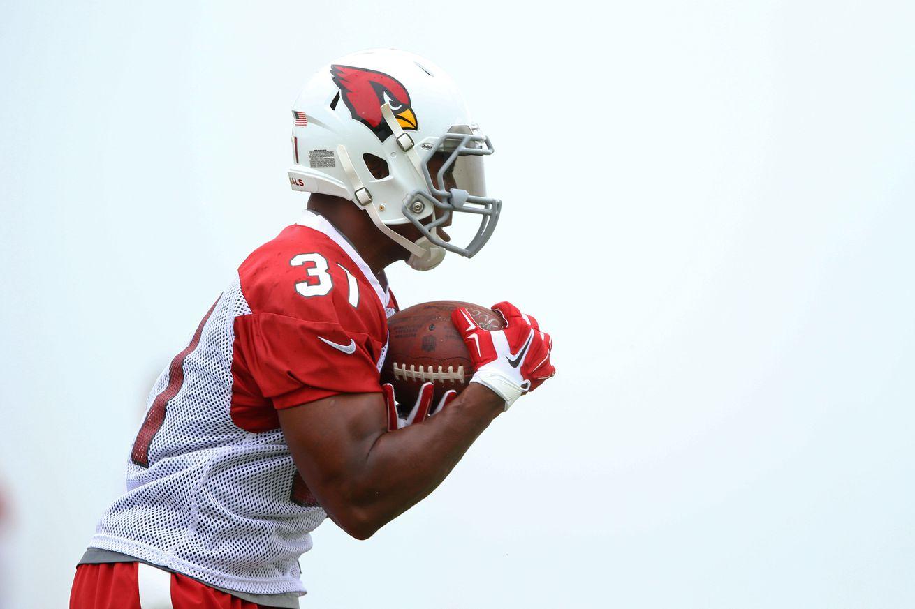 NFL Jerseys Nike - Arizona Cardinals training camp: David Johnson returns to practice ...