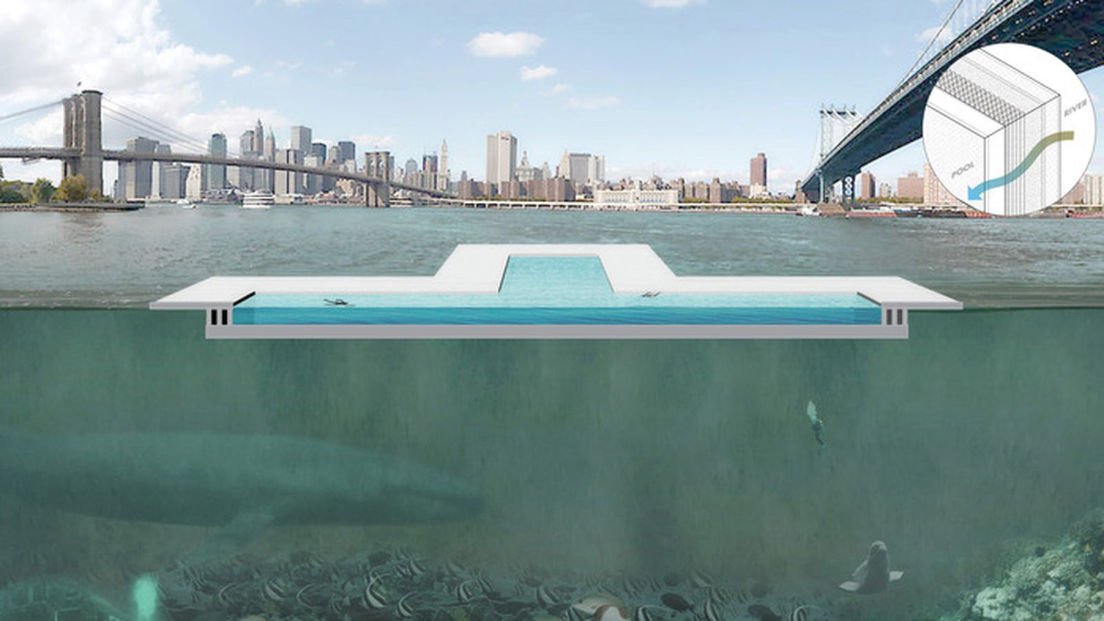 Floating Public Pool That Filters New York 39 S East River Seeks Crowdfunding The Verge