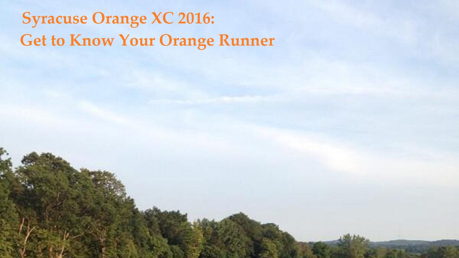 Orange_20runner_2016.0