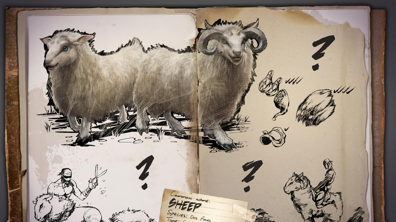 Sheep coming to Ark: Survival Evolved after Steam Awards promo blows up