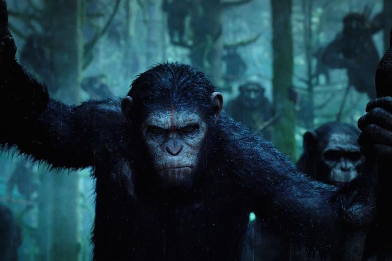 dawn of the planet of the apes (facebook image crop)