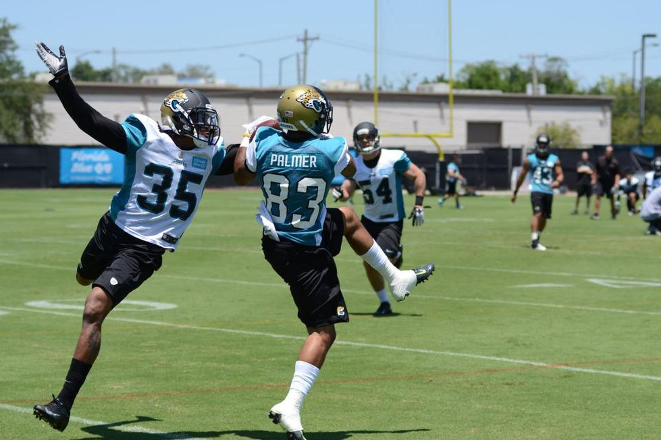 NFL Jerseys NFL - Jaguars OTAs: Tobias Palmer showing off speed - Big Cat Country