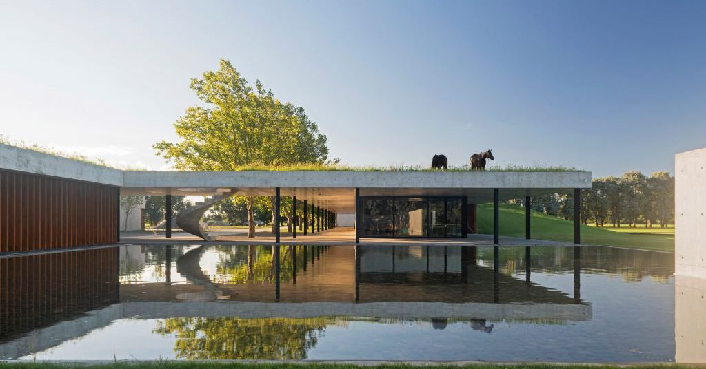 Stunning Modern Stable Treats Horses To Rooftop Grazing