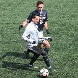Adam Najem on the ball
