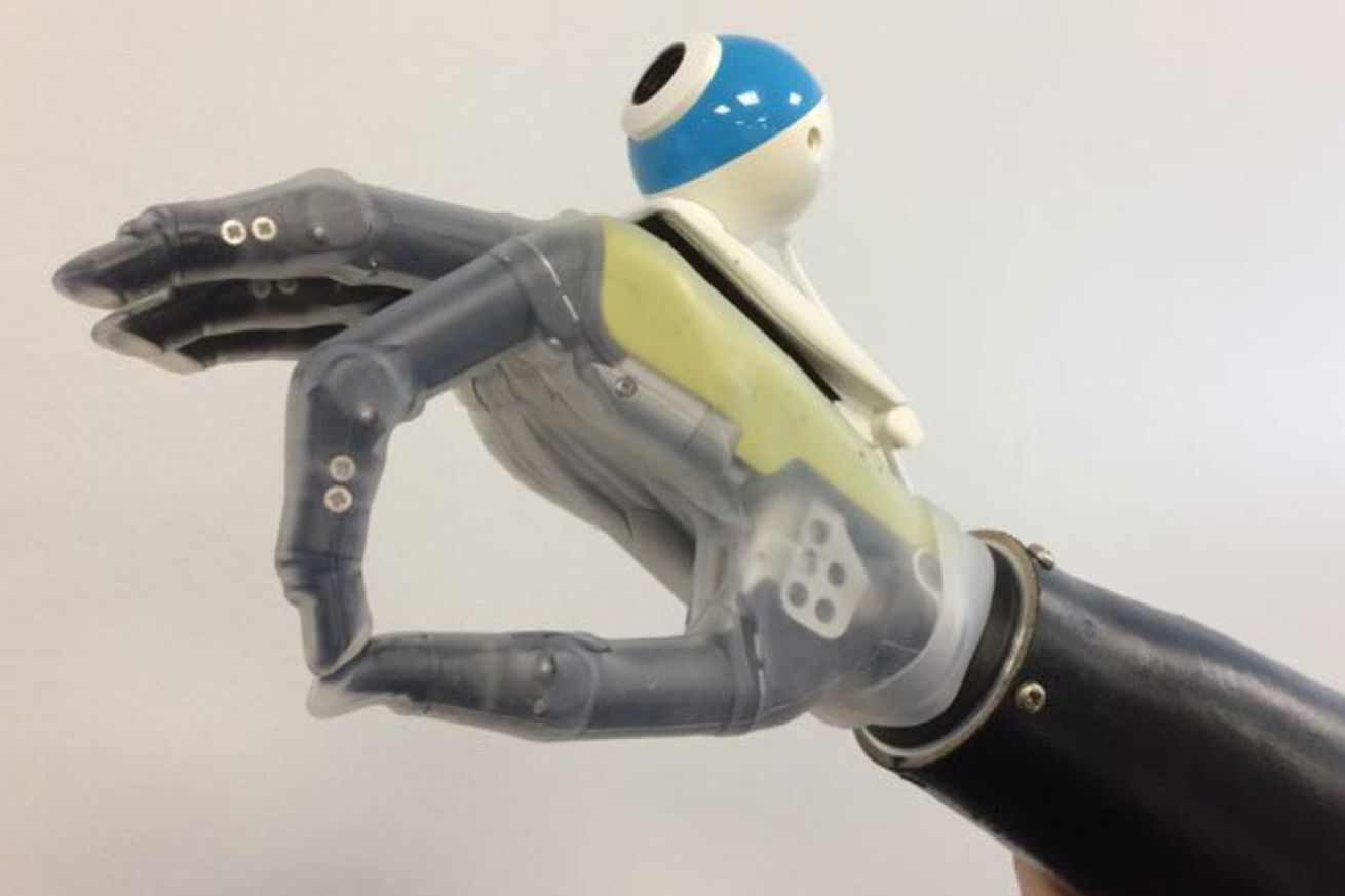 An AI-powered bionic hand will know what it's grabbing