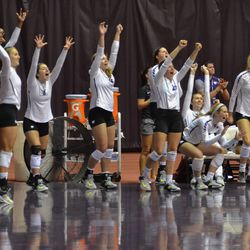 MANHATTAN - The K-State bench celebrates a point during the fifth set of a match against Arkansas on Aug. 31, 2017.