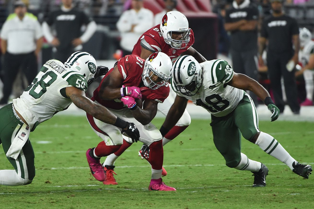 Jets Create More Cap Space by Declining Erin Henderson's Contract Option