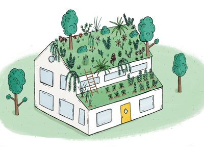 Case study: How to install a green roof on a private home
