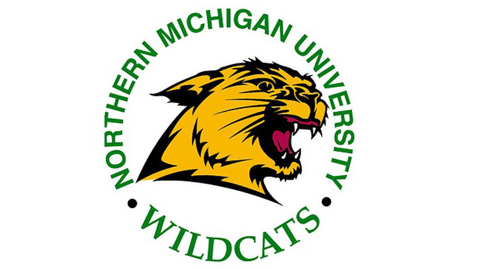 Hockey series preview: Northern Michgian vs. Wisconsin ...