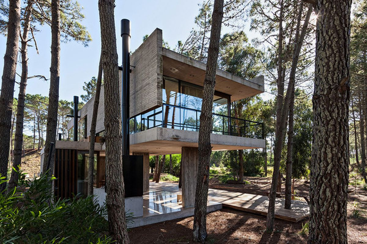 Take A Gander At A Stunning Concrete House In The Woods
