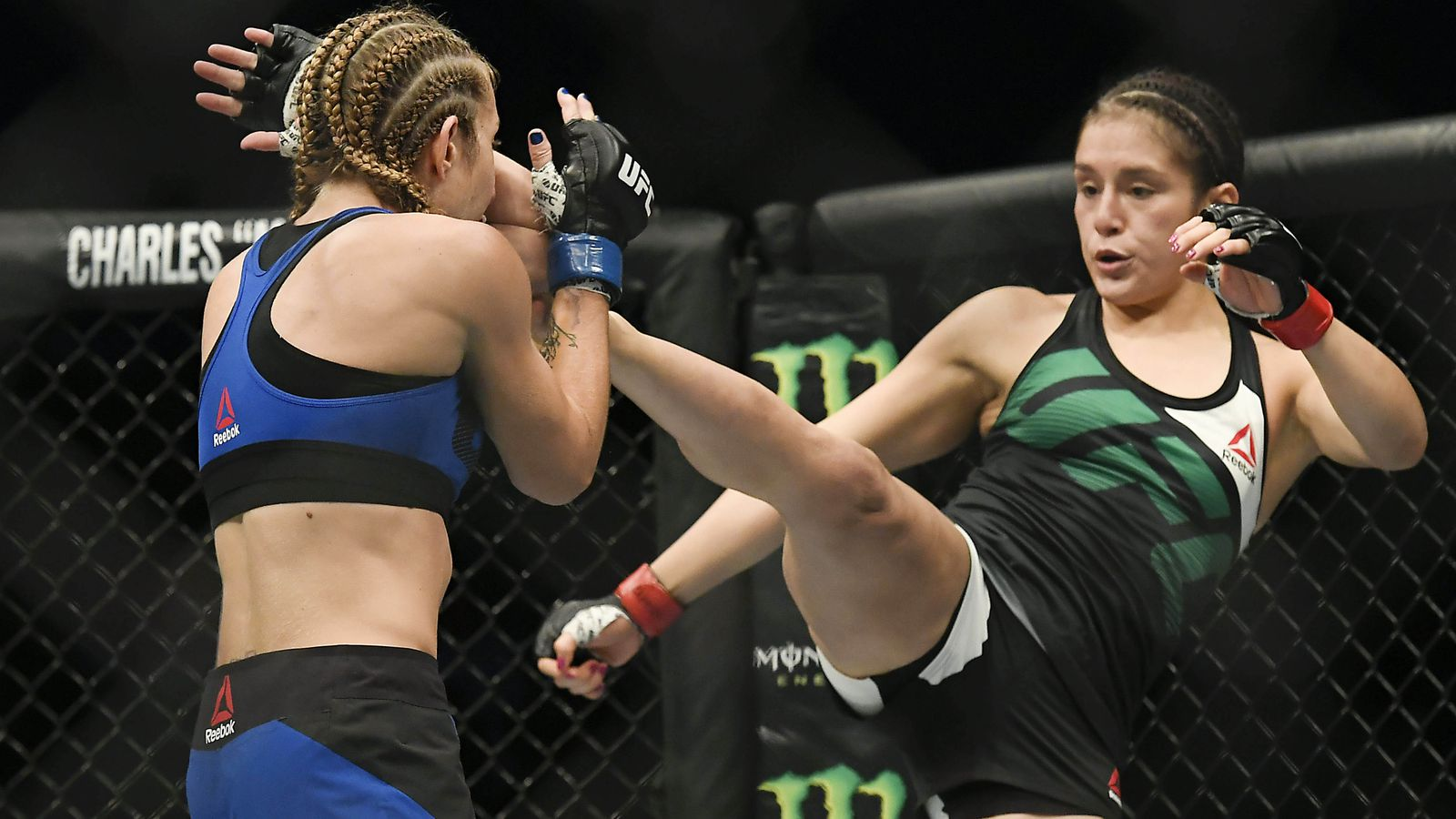 UFC Fight Night 104 fight card: Felice Herrig vs Alexa Grasso full fight preview