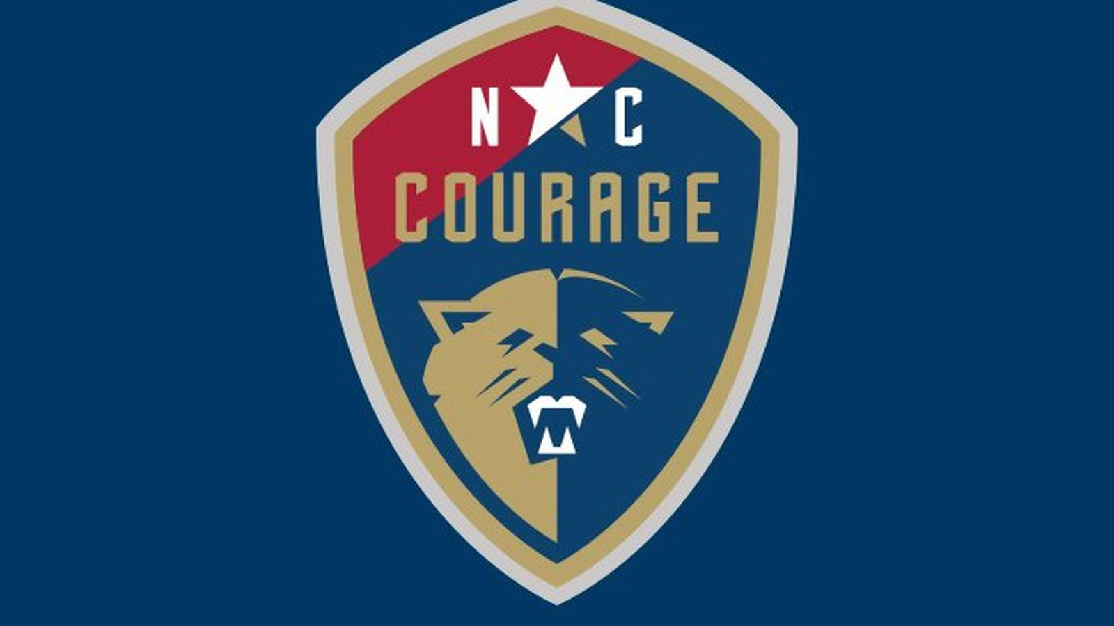 Nc_courage_logo.0