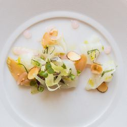 Fluke crudo with pickled rhubarb, fennel, and almonds