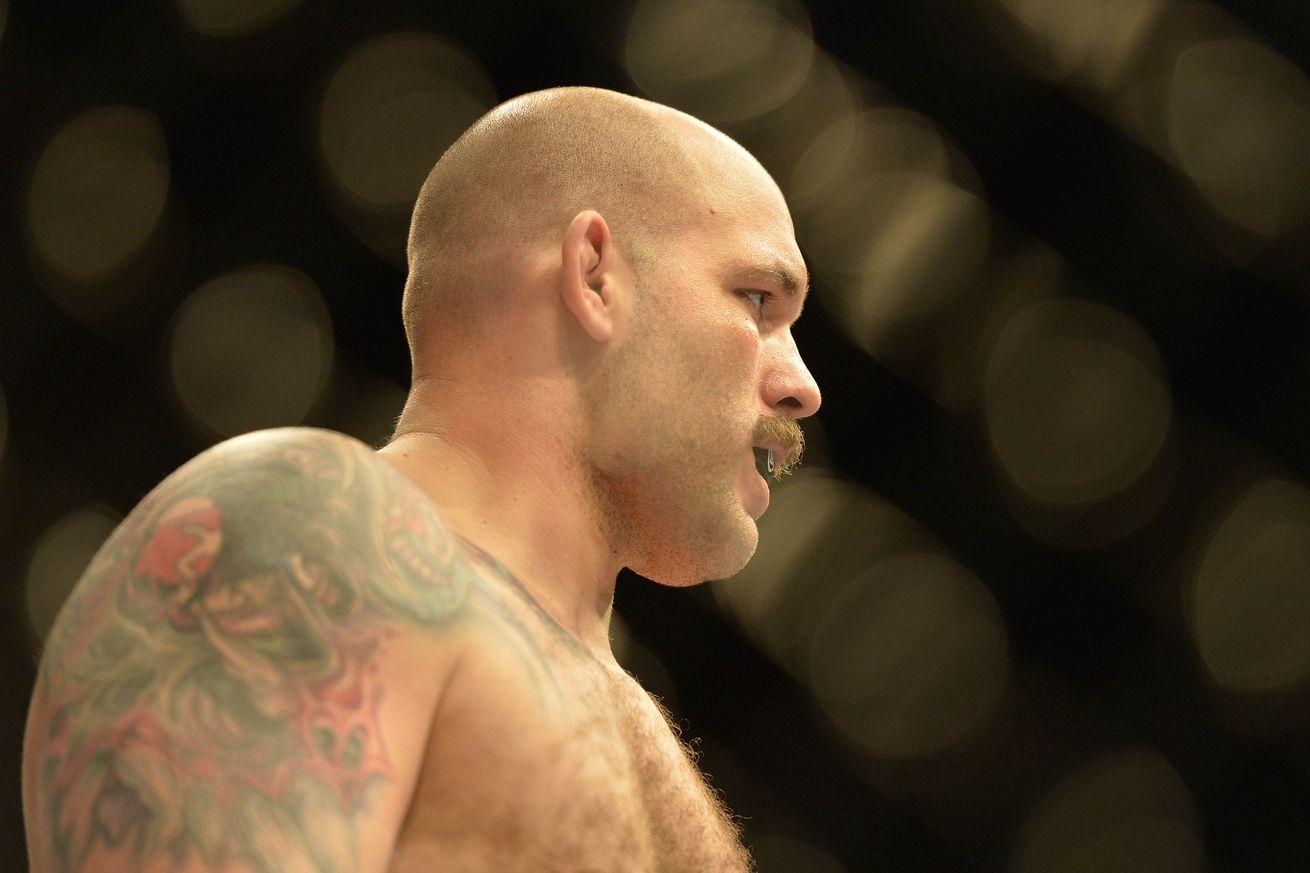 Johnson vs. Omielanczuk, Lansberg vs. Macedo added to UFC Fight Night 107 in London