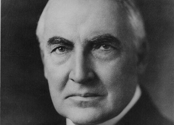 Warren Harding's glorious face