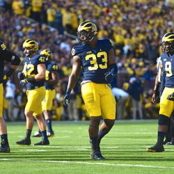 Michigan is revamping the front seven, but Mike McCray returns to hold down the fort.