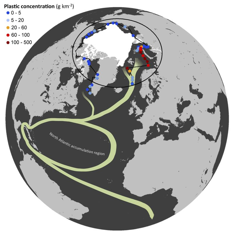The colored dots indicate where the expedition collected samples. The white section is the polar ice cap. The green lines are currents: the North Atlantic Subtropical Ocean Gyre and the Global Thermohaline Circulation. Image by Andres Cozar.