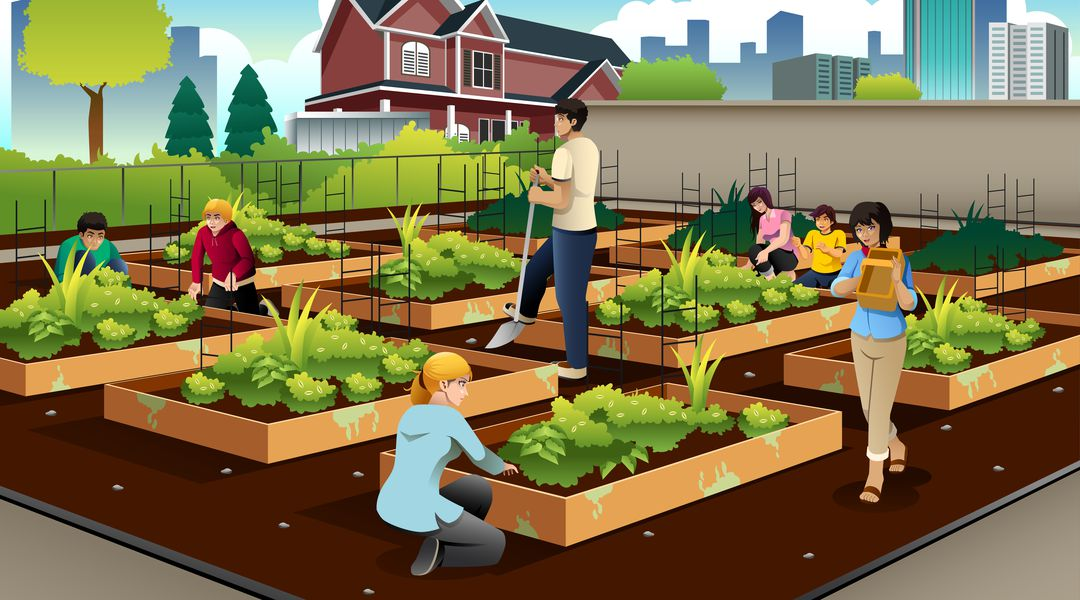 The Real Value Of Urban Farming Hint It S Not Always