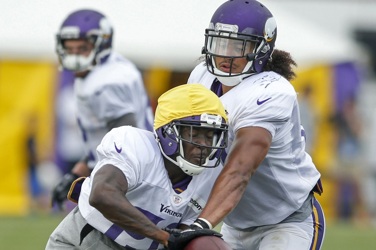 Nike jerseys for wholesale - Minnesota Vikings Release First Depth Chart of 2016 - Daily Norseman