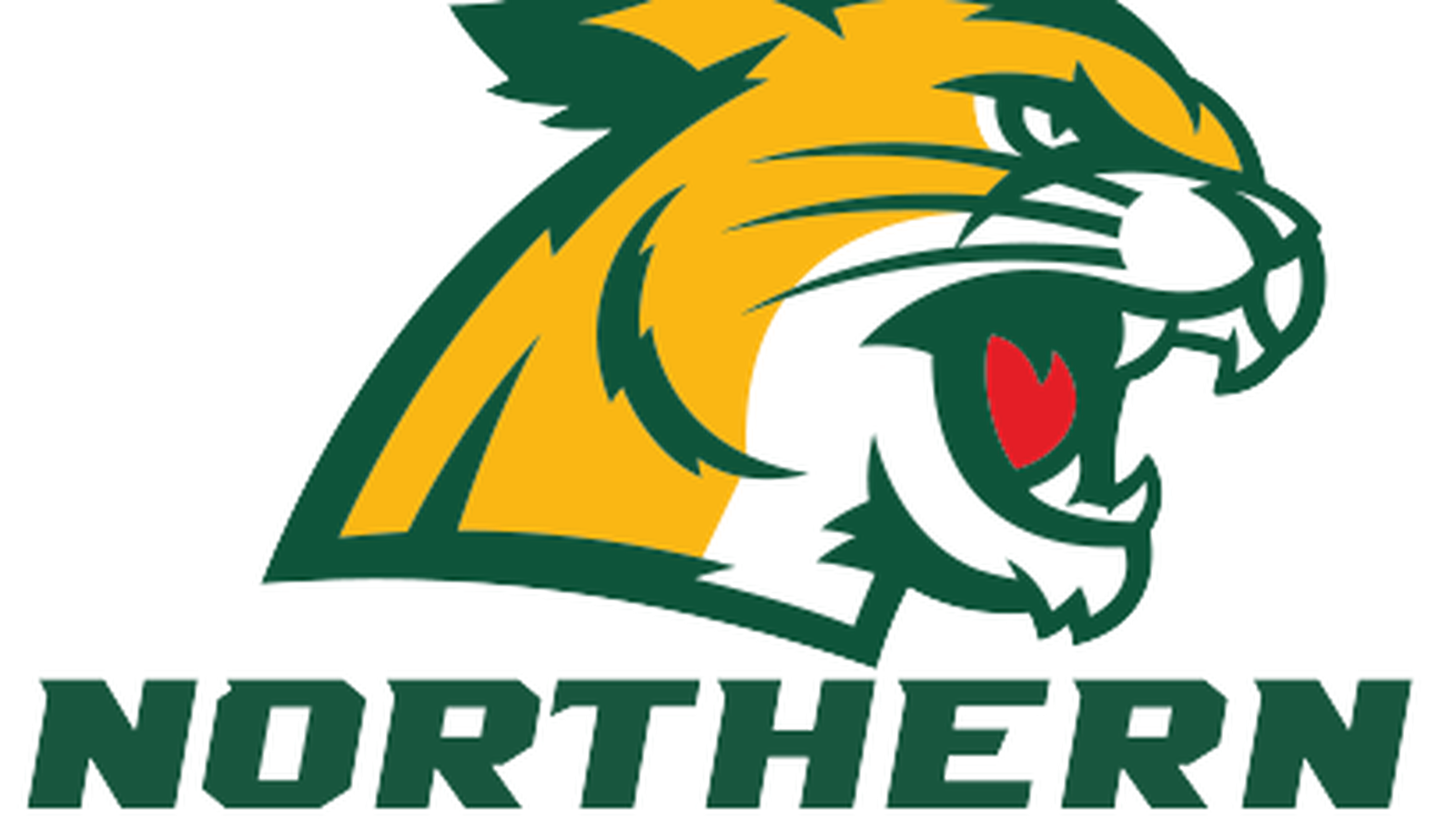 Northern Michigan Goaltender On The Verge Of Breaking Ncaa