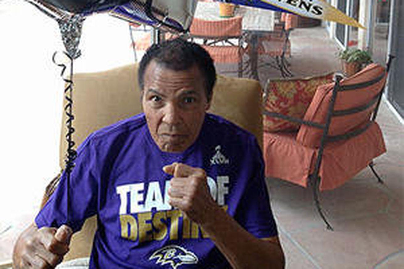 cheap nfl Baltimore Ravens Julian Wilson Jerseys
