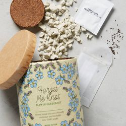 """Modern Sprout <a href=""""https://www.anthropologie.com/shop/spring-garden-seed-kit?category=valentines-day-gifts&color=040"""">Spring Garden Seed Kit</a>, $12"""